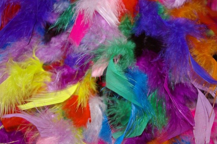 feather-1128204_960_720